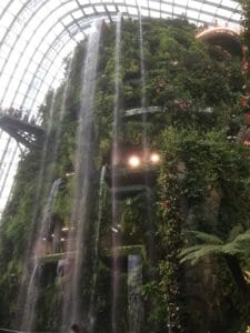 Onderdeel Garden by the Bay
